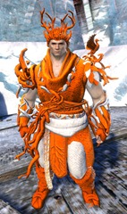 gw2-nature's-oath-outfit-norn-male