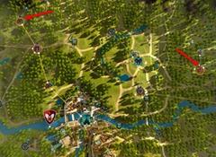 bdo-birch-timber-location