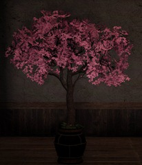 bdo-cherry-blossom-pot-4