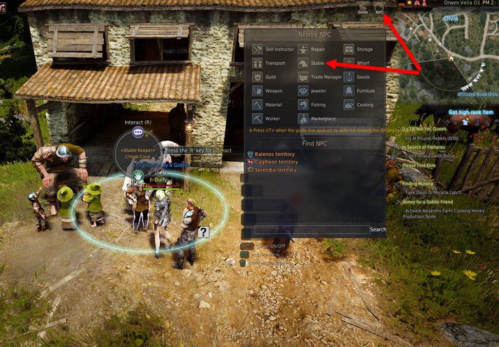 Black Desert Online Horse Taming and Breeding Guide - Dulfy