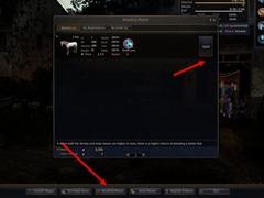 bdo-horse-taming-guide-21