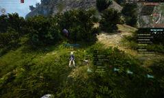 bdo-horse-taming-guide-olvia-2