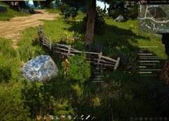 bdo-life-easter-egg-casta-farm-2
