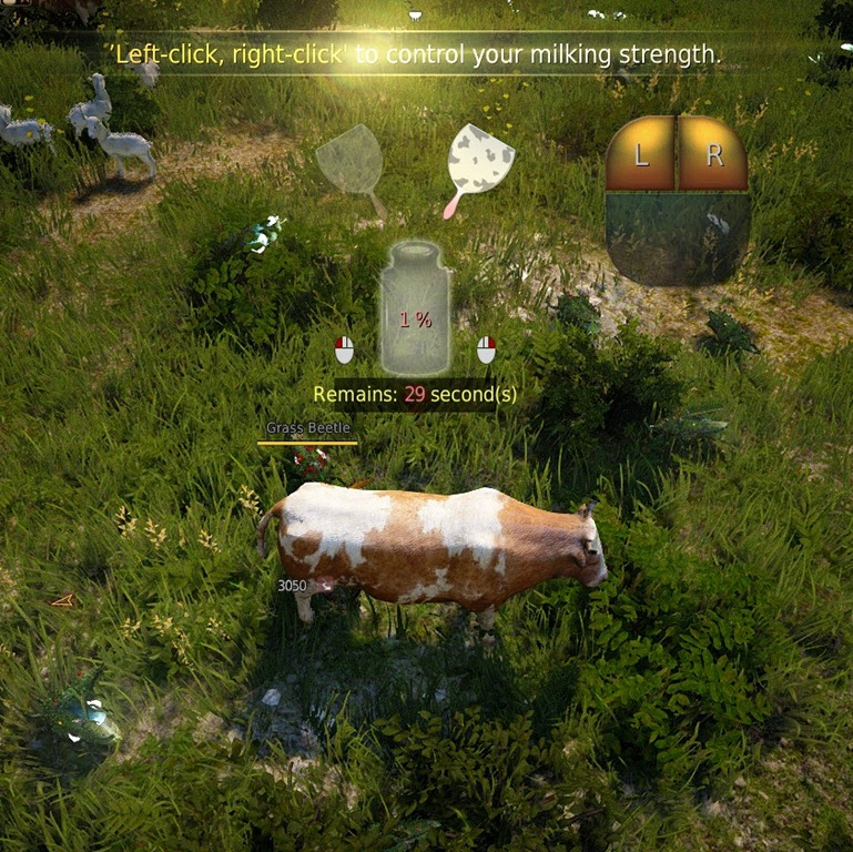 Black Desert Making Milk Tea and Sute Tea Guide - Dulfy