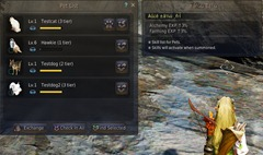 bdo-pet-breeding-guide-3