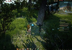 bdo-raindrop-egg-location-iliya-island-2