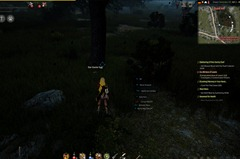bdo-star-easter-egg-epheria-port-2