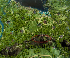 bdo-wild-herb-locations-3