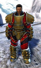 gw2-ironclad-outfit-human-male-4