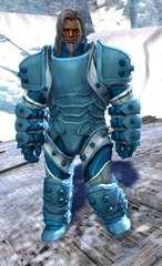 gw2-ironclad-outfit-norn-male-4