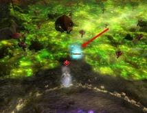 gw2-slothasor-guide-imbued-mushrooms-3