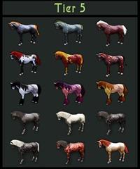 bdo-horse-tier-list-3