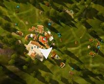bdo-wocester-olvia-villager