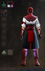 gw2-gwen's-attire-male-dye-pattern-2