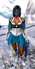 gw2-gwen's-attire-norn-female