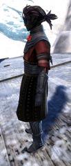 gw2-gwen's-attire-sylvari-male-2