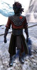 gw2-gwen's-attire-sylvari-male