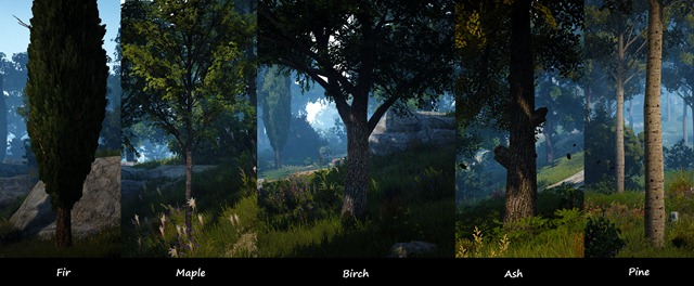 bdo-tree-types