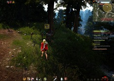 bdo-useful-junk-2