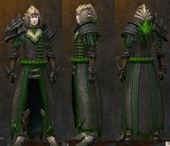 gw2-envoy-armor-medium-male