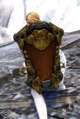 gw2-privateer-shield-skin-2