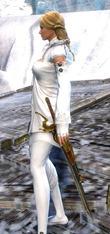 gw2-privateer-sword-skin-2