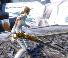 gw2-privateer-sword-skin