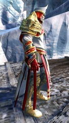 gw2-white-mantle-outfit-norn-male-2