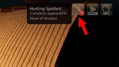 bdo-blue-whale-tracking
