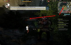 bdo-hunting-life-skill-quest-22