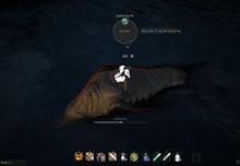 bdo-hunting-life-skill-quest-23
