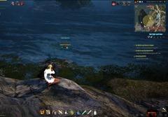 bdo-hunting-life-skill-quest-27