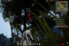 bdo-hunting-life-skill-quest-31