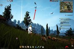 bdo-hunting-life-skill-quest-35