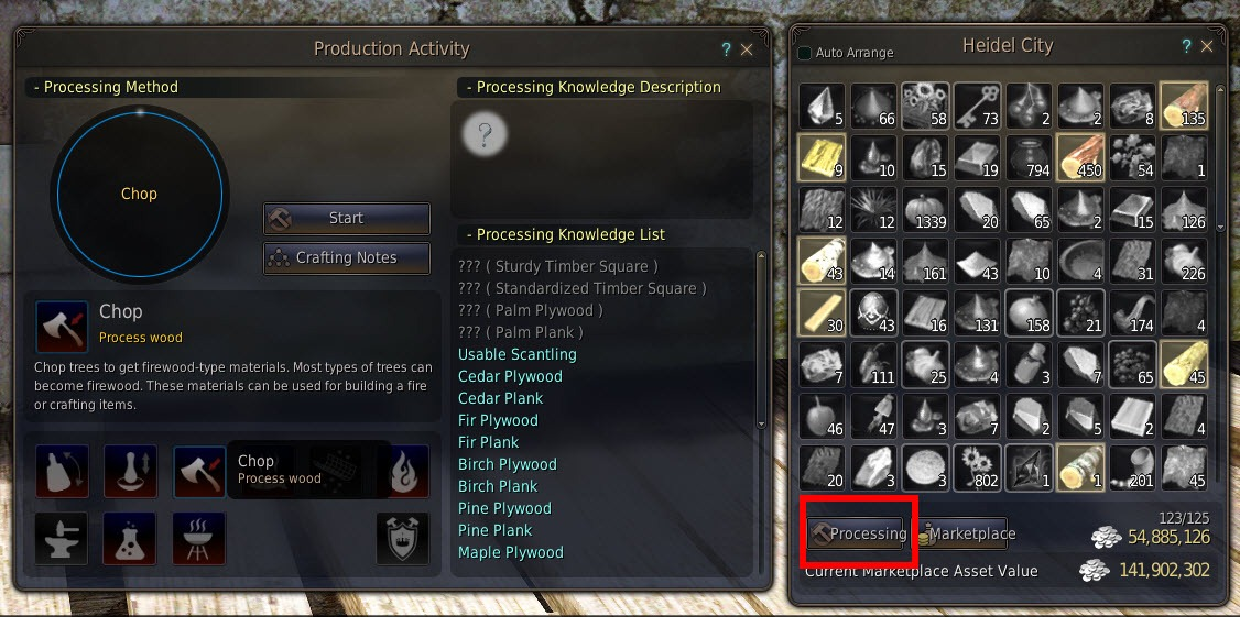 Black Desert Maid Costume and Pet Appearance Coupon Guide