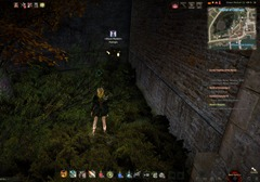 bdo-night-vendor-calpheon-2