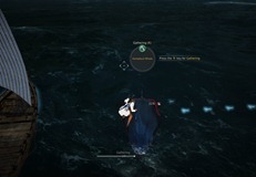 bdo-whale-hunting-guide-3