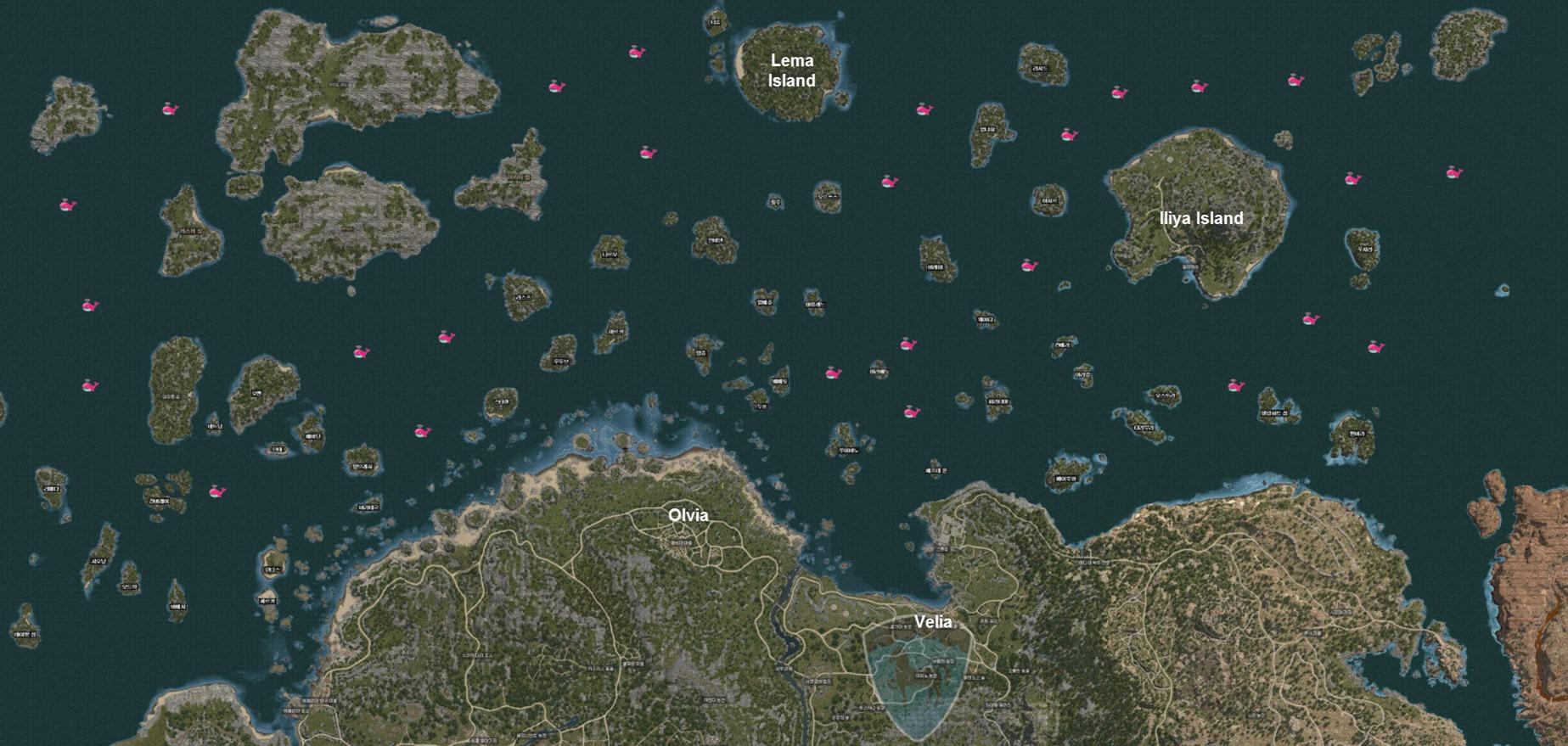 bdo-whale-map