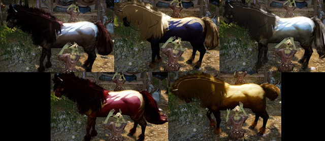 bdo-horse-special-appearence-6