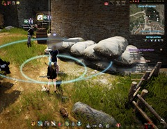 bdo-imperial-crafting-delivery-npc-3