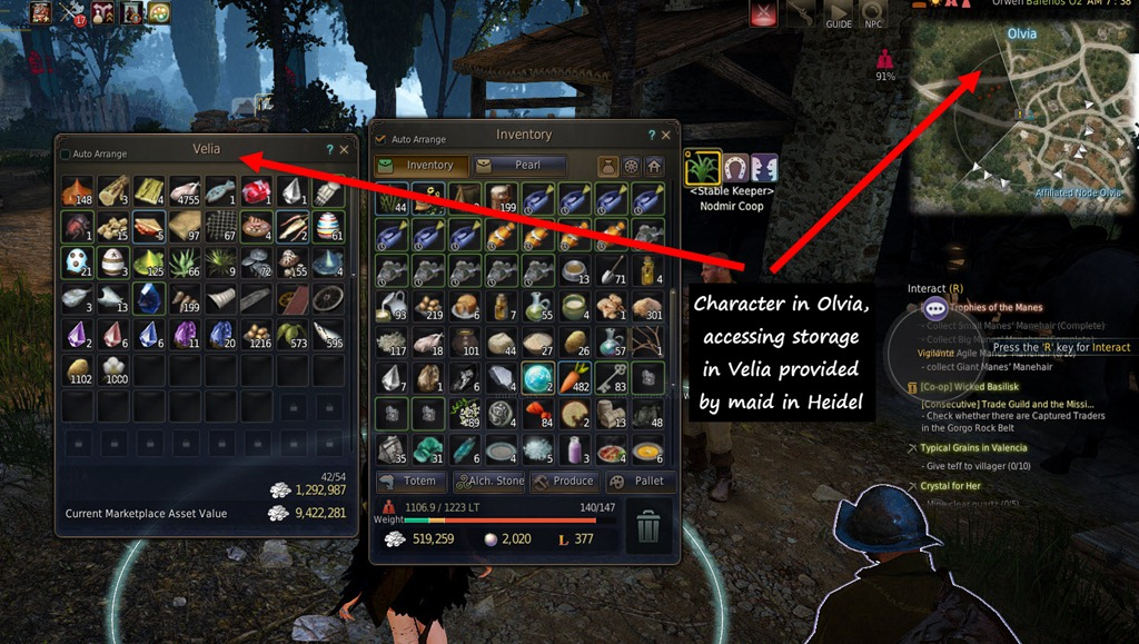 Black Desert Maids and Horse Appearance Coupon Guide - Dulfy