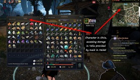 bdo-maid-interface-2