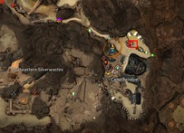 gw2-hungry-cats-locations-18