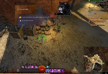 gw2-hungry-cats-locations-19