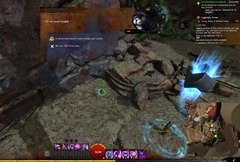 gw2-hungry-cats-locations-24