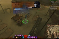 gw2-hungry-cats-locations-25