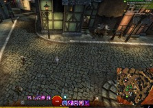 gw2-hungry-cats-locations-27