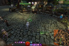 gw2-hungry-cats-locations-29