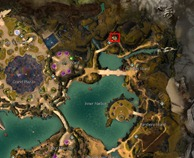 gw2-hungry-cats-locations-2