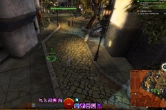 gw2-hungry-cats-locations-32